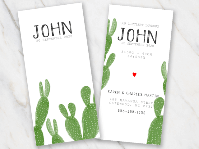 cactus birth announcement template