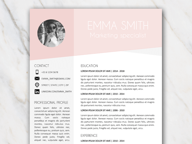 Small example of resume template with pink and grey colors and picture